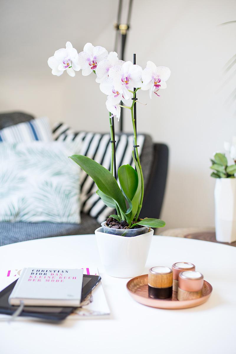 livingroom-inspiration-orchidee-westwingnow-deko-shadesofivory-blog