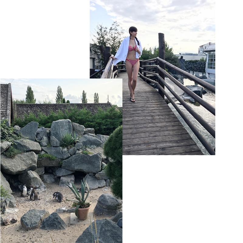 Bild: Spreewelten, schwimmen mit Pinguinen, Lübbenau, Spreewald, Erlebnisbad, Spaßbad, Blogger, Berlin
